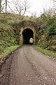 The tunnel, Mulgrave Woods - geograph.org.uk - 1801325.jpg