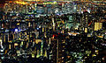 Tokyo View from Mori Tower.jpg