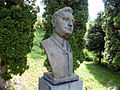 Topola Busta Alexandra Duchnovica.jpg