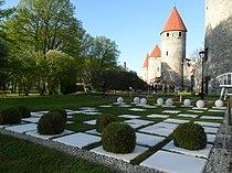 Tornide väljakul lillefestivali aiake.JPG