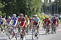 Tour de France 2013 - Étape 12 - Fougères 07.JPG