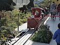 Toy train , つばめ電車 - panoramio.jpg