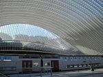 Train en gare de Liège-Guillemin.JPG