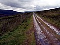 Trans Pennine Trail West - geograph.org.uk - 490162.jpg