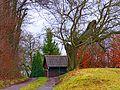 Tree - panoramio (28).jpg