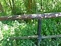 Trockengraben LuhneAnrode (2).jpg