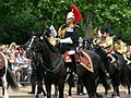 Trooping the Colour 2006 - P1110139 (169162071).jpg