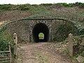 Tunnel in railway embankment - geograph.org.uk - 554014.jpg