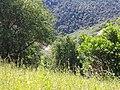 Tuolumne County, CA, USA - panoramio (30).jpg