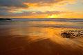 Turimetta beach narrabeen sydney nsw australia (3205788276).jpg