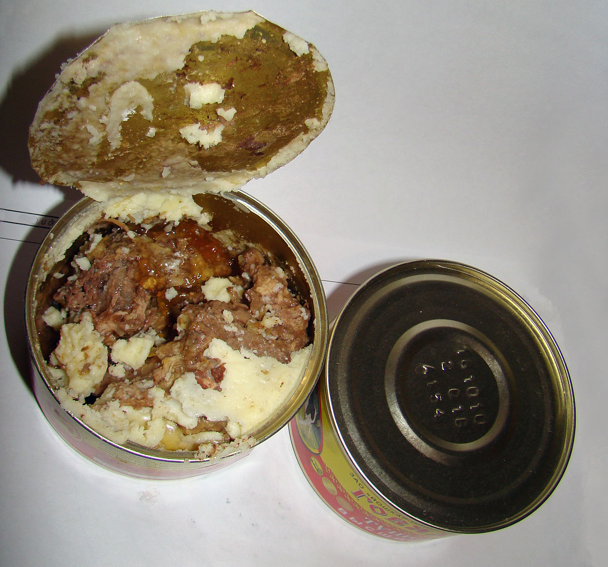 Strict Canned Food Diet In Dogs Cause Digestion Problems