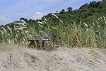 U.S., Philippine Marines conduct live-fire training during PHIBLEX 2015 150103-M-MF313-077.jpg