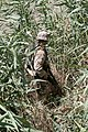 US Navy 050601-M-3301A-040 Cpl. John Christ assigned to Sixth Marine Regiment, First Battalion, Bravo Company searches a field during Operation Hard Knock.jpg