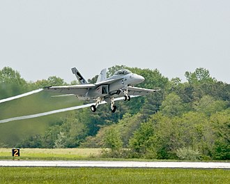 "Camelina sativa - A United States Navy F/A-18 Super Hornet – the ""Green Hornet"" – making a flight at Naval Air Station Patuxent River, Maryland, on 22 April 2010 using a fuel partially made from Camelina sativa."