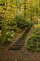 Un escalier dans un coin perdu (22854673345).jpg
