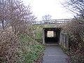 Underpass, Fife Coastal Path - geograph.org.uk - 1078965.jpg