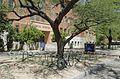 University of Arizona, Tucson, Arizona - panoramio (32).jpg