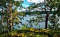Utsikt från Fredriksberg mot Saltsjön.jpg
