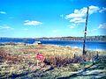 Valdaysky District, Novgorod Oblast, Russia - panoramio (3093).jpg
