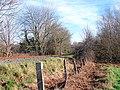 Vale of Rheidol Railway track - geograph.org.uk - 683472.jpg