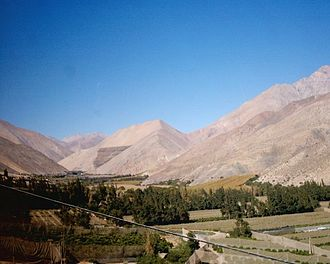 Agriculture in Chile - Agriculture in Elqui valley