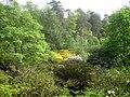 Valley Gardens (5679836445).jpg