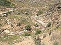 Valley of Jiltema Say.JPG