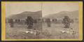 Valley of the Ramapo between Turners and Greenwood Station, from the burying ground, by E. & H.T. Anthony (Firm).png
