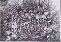 Van Gogh - Büschel von Schachbrettblumen.jpeg