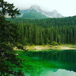 Veduta del Lago di Carezza.jpg