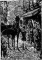 Verne - P'tit-bonhomme, Hetzel, 1906, Ill. page 303.png