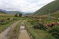 Vesnice Ketrisi - panoramio.jpg