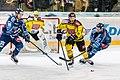 Vienna Capitals vs Fehervar AV19 -127.jpg