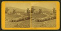 View of the mountain resorts, from Robert N. Dennis collection of stereoscopic views.png
