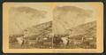 View on Grand Canyon R. R. extension, Colorado, by Littleton View Co. 2.png