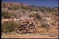 Views at Pipe Spring National Monument, Arizona (68a14d9d-c89b-40fe-a07a-7de35d17645f).jpg