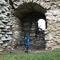 Visborgs slottsruin 02.jpg