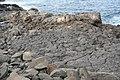 Vulkanische Küste, Südwest-Lanzarote VI.jpg