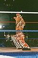 WWE- Birmingham 200997 (22).jpg