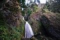 Wahkeena Falls - Columbia River Gorge Oregon (35543386113).jpg