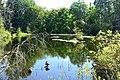 West Hylebos Wetlands Park Brook Lake 01.jpg