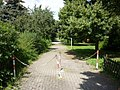 Westheim (Pfalz), Dr.-Georg-Heeger-Allee - geo.hlipp.de - 23499.jpg