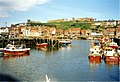 Whitby Harbour - geograph.org.uk - 346678.jpg
