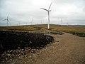 Whitelee Windfarm - geograph.org.uk - 1546165.jpg