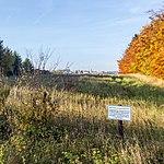 Wildacker zwischen Nettersheim und Engelgau-2236.jpg
