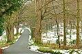 Winter at Minnowburn near Belfast (6) - geograph.org.uk - 1155515.jpg