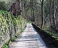 Wood Lane, Brian Scholes - geograph.org.uk - 386611.jpg