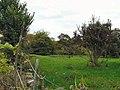 Woodley Fields - geograph.org.uk - 1521334.jpg