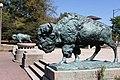 World's Fair Bison Humboldt Park Chicago 2020-0667.jpg