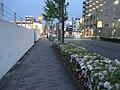 Yasujicho, Nishi Ward, Nagoya, Aichi Prefecture 452-0815, Japan - panoramio (1).jpg